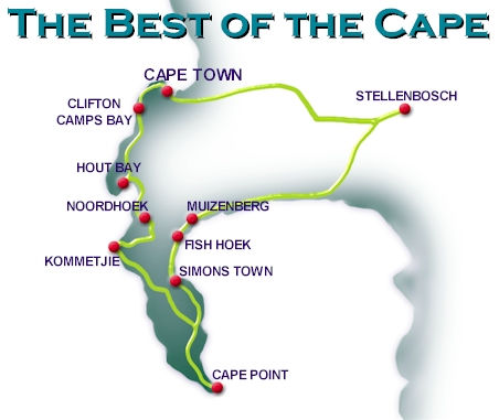 Best of the Cape