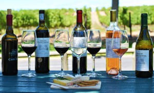 wine tours in cape town