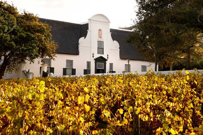 Hotspot of the week – Groot Constantia
