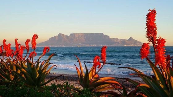Life in Cape Town never gets old, especially with a view like this!
