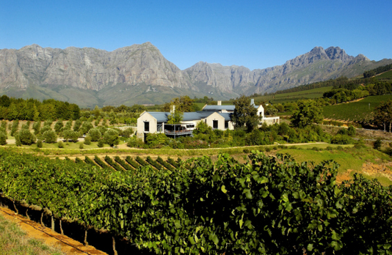 Luxury Classic Car Winelands Tours