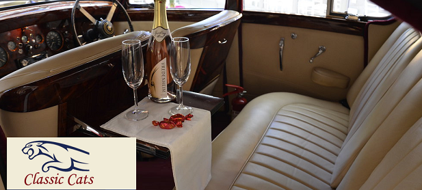 Classic Cats Luxury Wine Tours