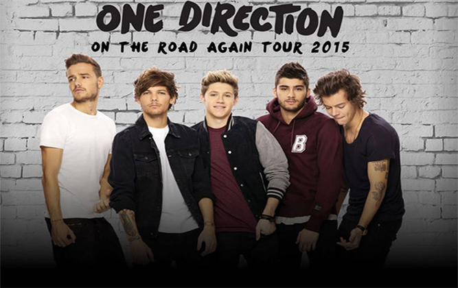 One Direction in Cape Town 2015