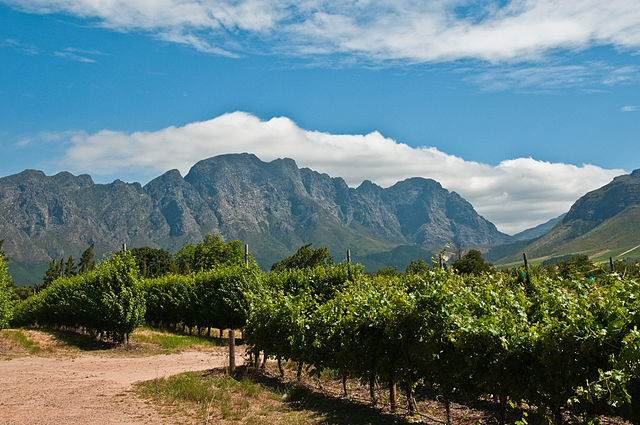 More Things to Do in Cape Town in Winter
