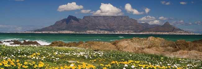 Local Guide to Cape Town in Spring