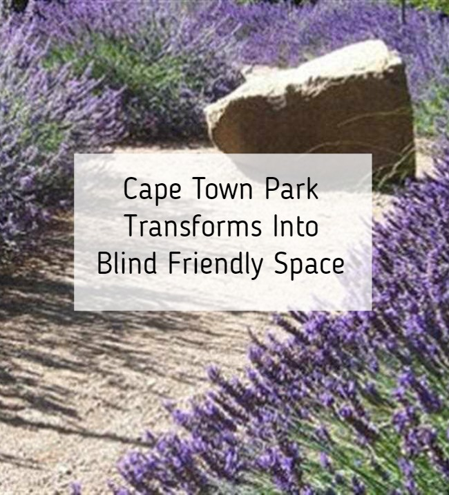 Cape Town Park Transforms Into SA's Only Blind Friendly Park