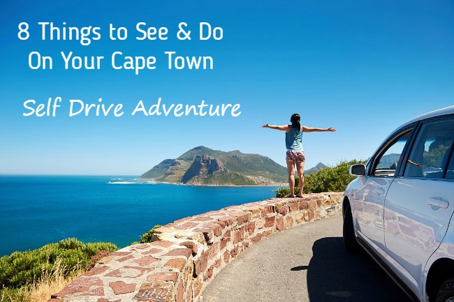8 Things to See on a Cape Town Self Drive Adventure