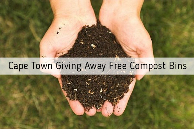 Free Compost Bins in Cape Town