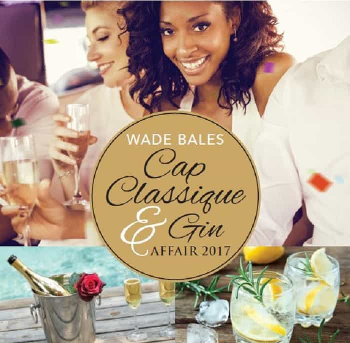 10 Best Things to do in Cape Town This Weekend - Cap Classique & Gin Affair