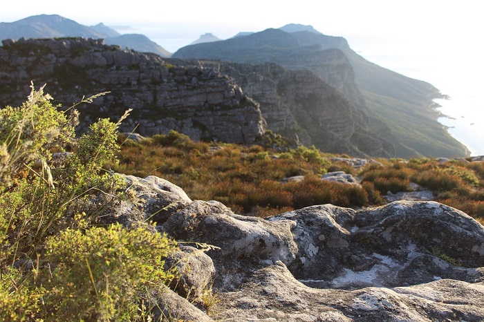 10 Reasons Why Cape Town is The Perfect Honeymoon Destination - The Nature