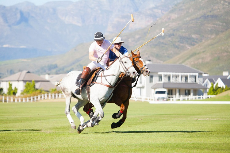 8 Best Things to do in Cape Town This Weekend — 3-5 November 2017 - Cintron Pink Polo 2017