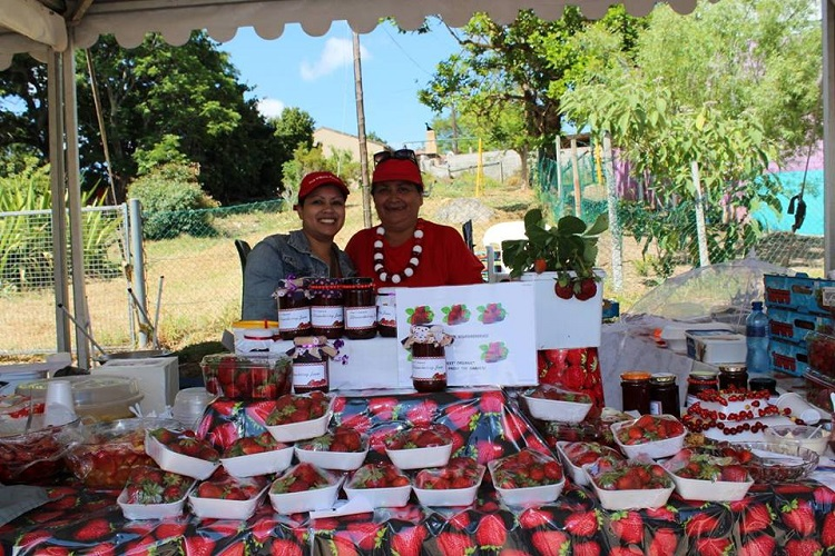 8 Best Things to do in Cape Town This Weekend — 3-5 November 2017 - Jamestown Strawberry Festival