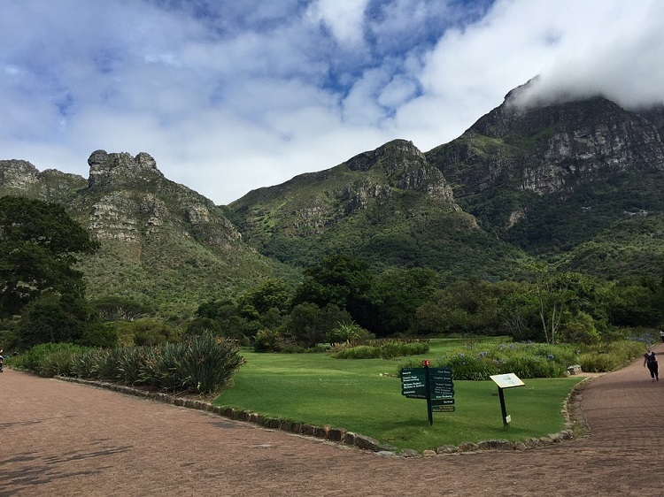 An A to Z Guide on What to Do in Cape Town This Year - Gardens