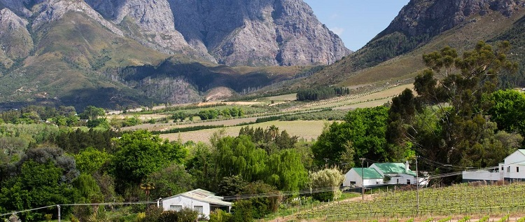Best Things to do in Cape Town This Weekend — 9 - 11 March 2018 - Mont Rochelle Harvest Festival
