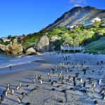 15 Top-Rated Outdoor Adventures in South Africa