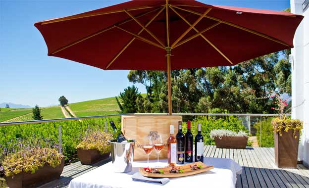 wine tasting in Western Cape