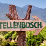 8 Reasons Stellenbosch Should Be Your Next Weekend Getaway