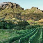 10 Reasons to Make a Quick Getaway to Stellenbosch