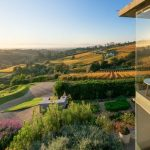 5 Beautiful Constantia Estates You Would Love To Explore In Cape Town